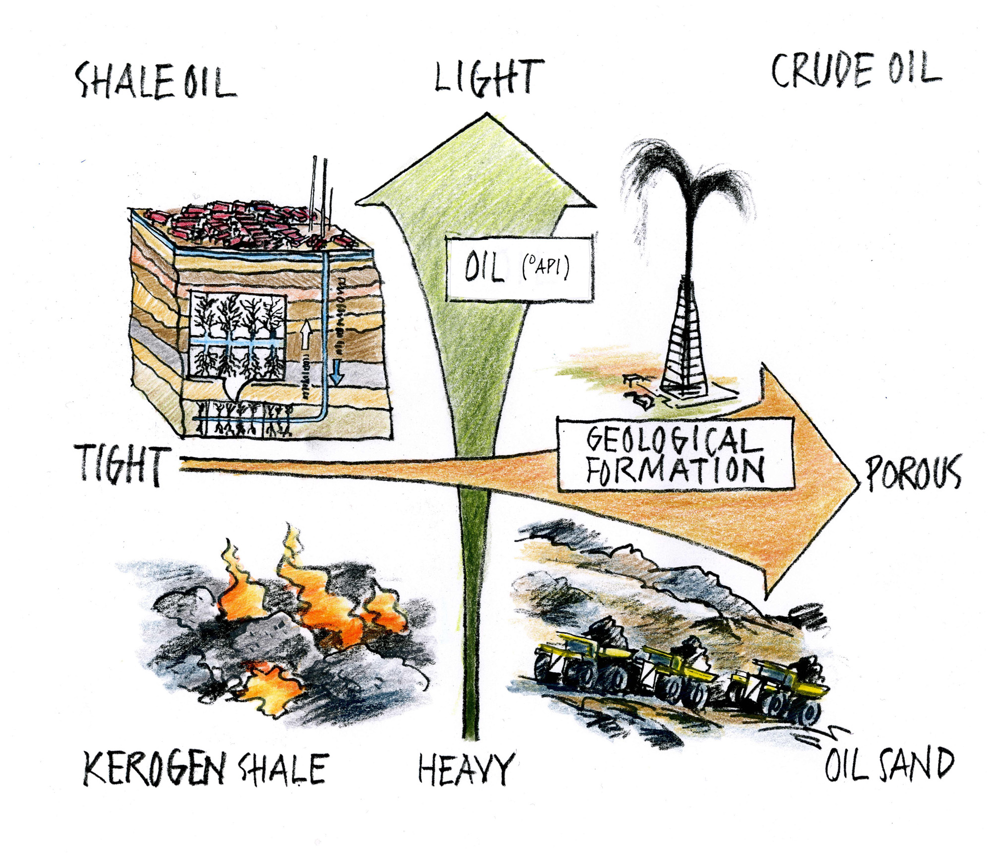 Different types of oil
